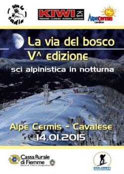 La via del Bosco al chiar di luna 2015