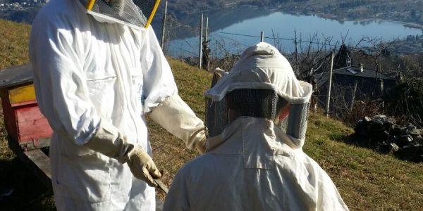 Il mio apiario vista lago con il mio piccolo aiutante
