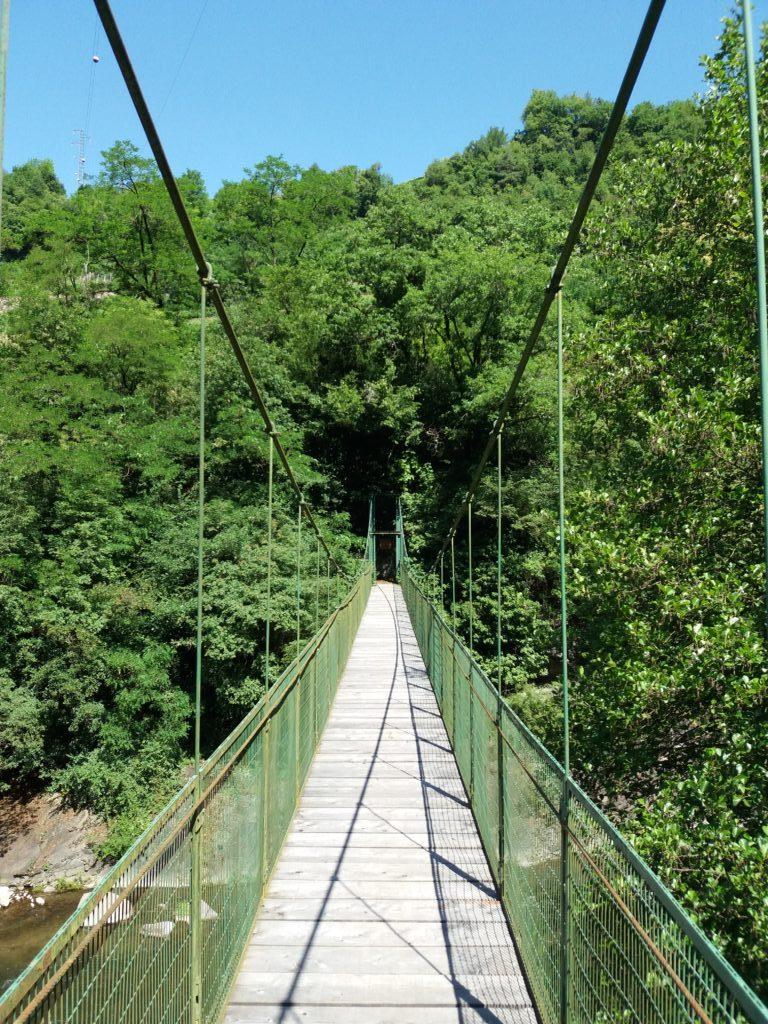 Il ponte delle formiche a Pozzolago sull'Avisio