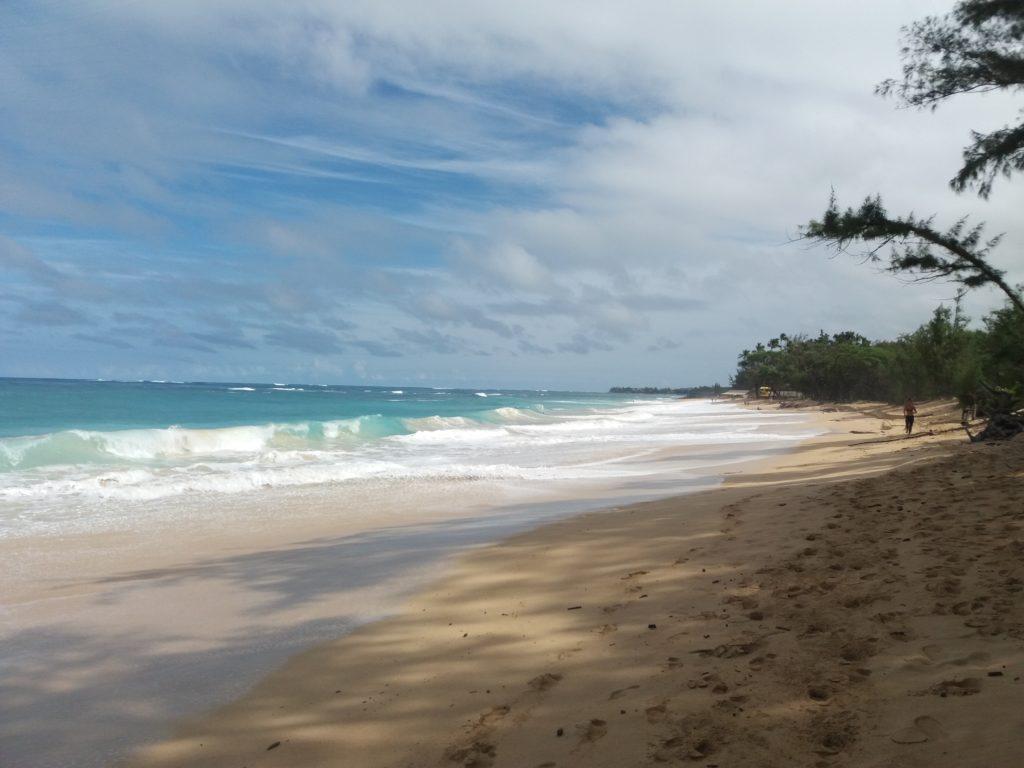 The big Baldwin beach in Paia, Maui, Hawaii