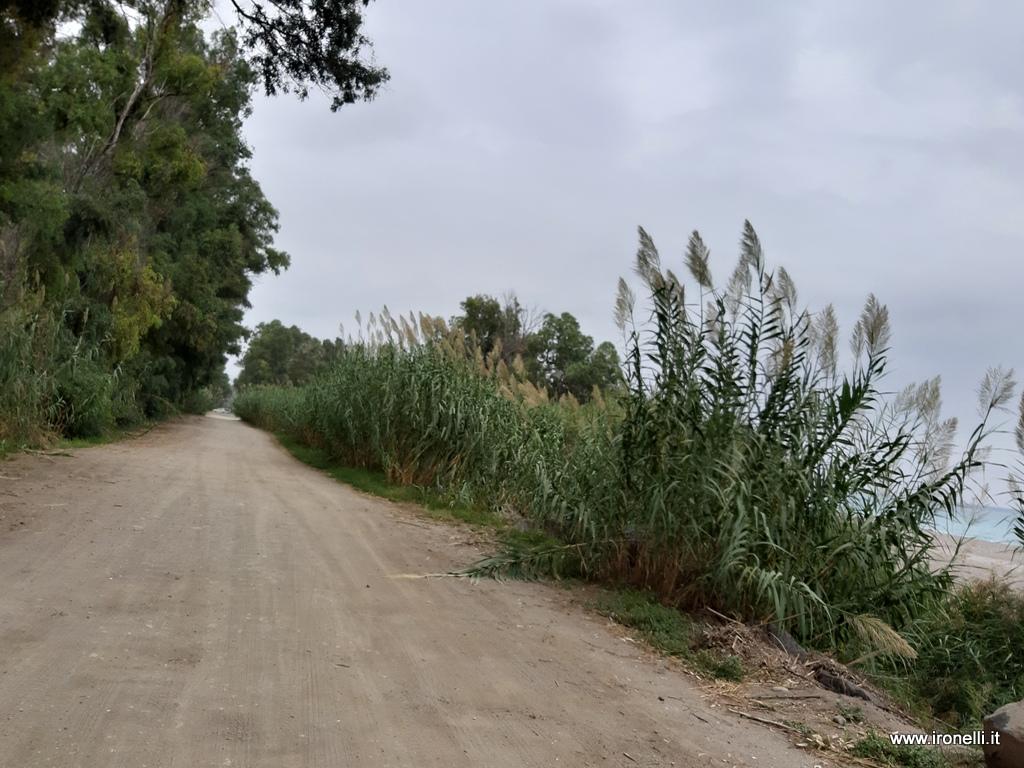 Il tratto di collegamento tra le due provinciali all'interno della riserva naturale del fiume Alcantara