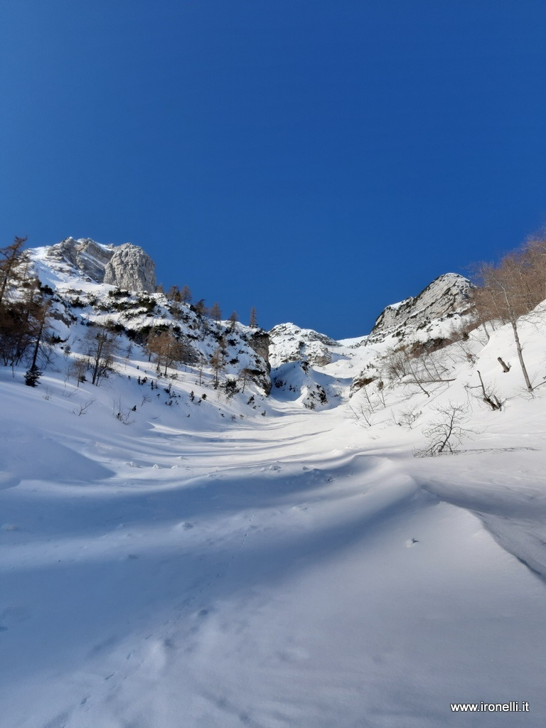 Bocca di lavinella in Vigolana