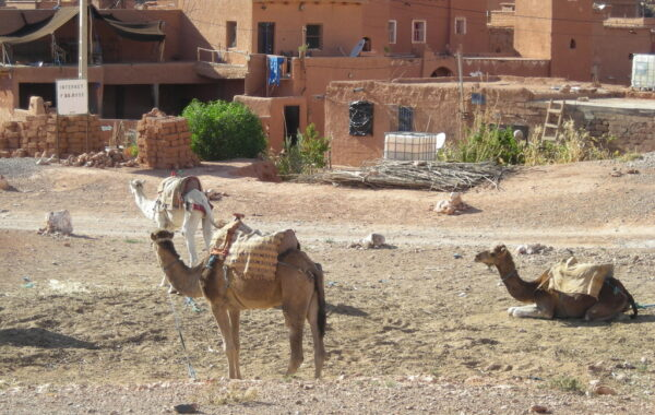 MaroccoBike-27-10-09-17-19-56