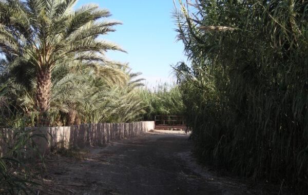 MaroccoBike-29-10-09-10-36-11