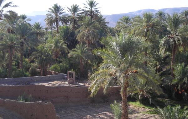 MaroccoBike-29-10-09-10-40-48