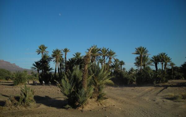 MaroccoBike-29-10-09-18-18-21