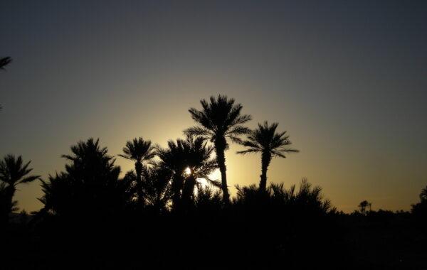 MaroccoBike-30-10-09-08-58-57