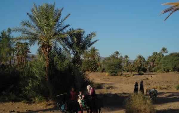 MaroccoBike-30-10-09-09-37-19