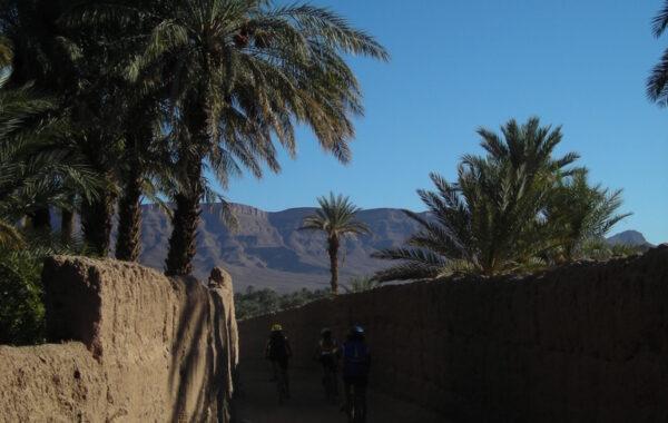 MaroccoBike-30-10-09-10-55-36