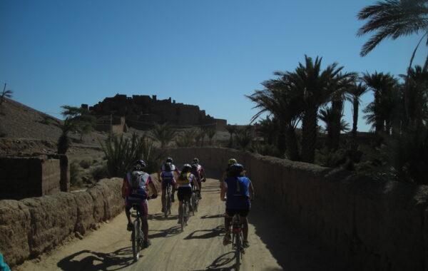 MaroccoBike-30-10-09-12-10-12