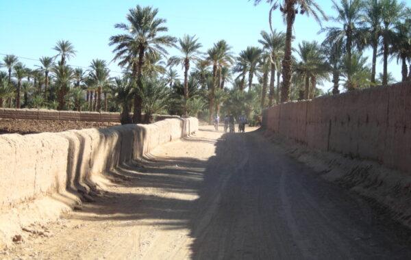MaroccoBike-30-10-09-16-56-00