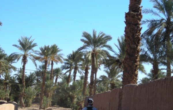 MaroccoBike-30-10-09-16-56-09