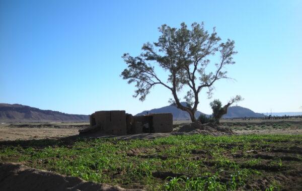 MaroccoBike-30-10-09-17-16-10
