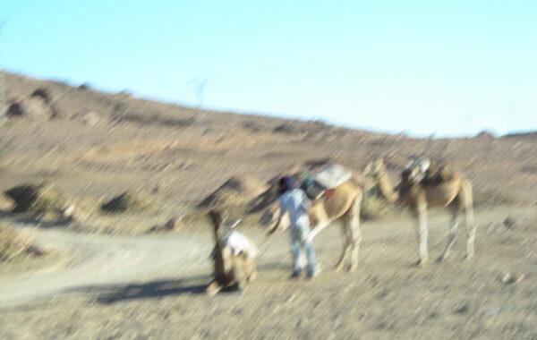 MaroccoBike-30-10-09-17-45-32