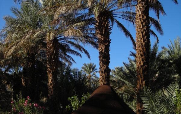 MaroccoBike-30-10-09-18-04-35